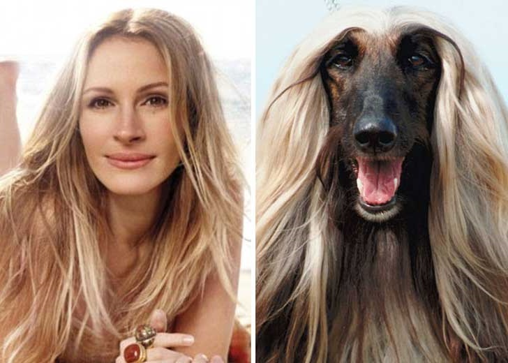 51 Celebs And Their Animal Kingdom Counterparts