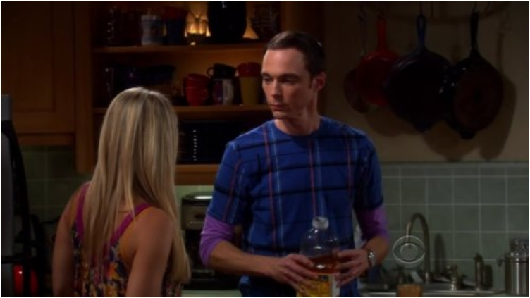 31 Awkward And Funny Sex Moments From Big Bang Theory