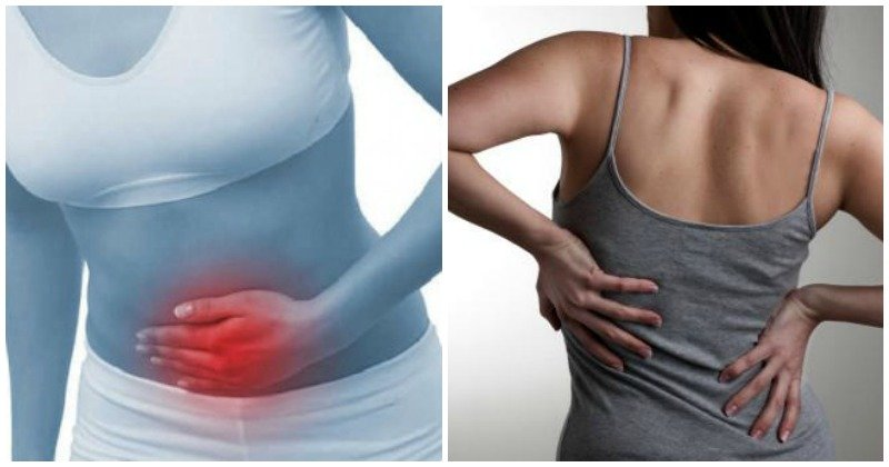 gallstone symptoms: should you worry?, Human Body