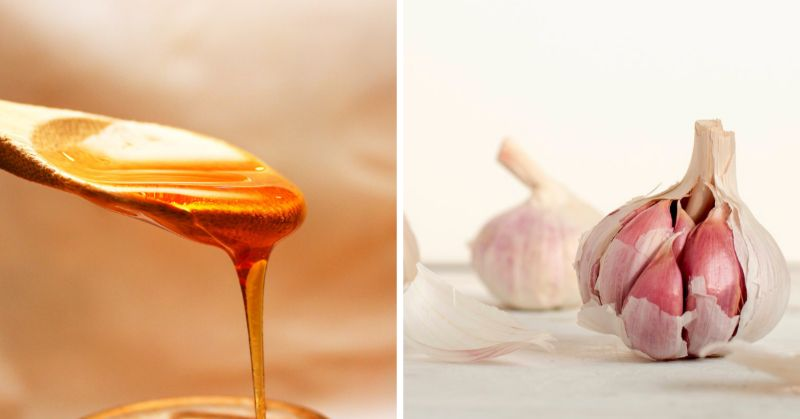 Fight Off Fever with Simple, Honey-Based Recipes