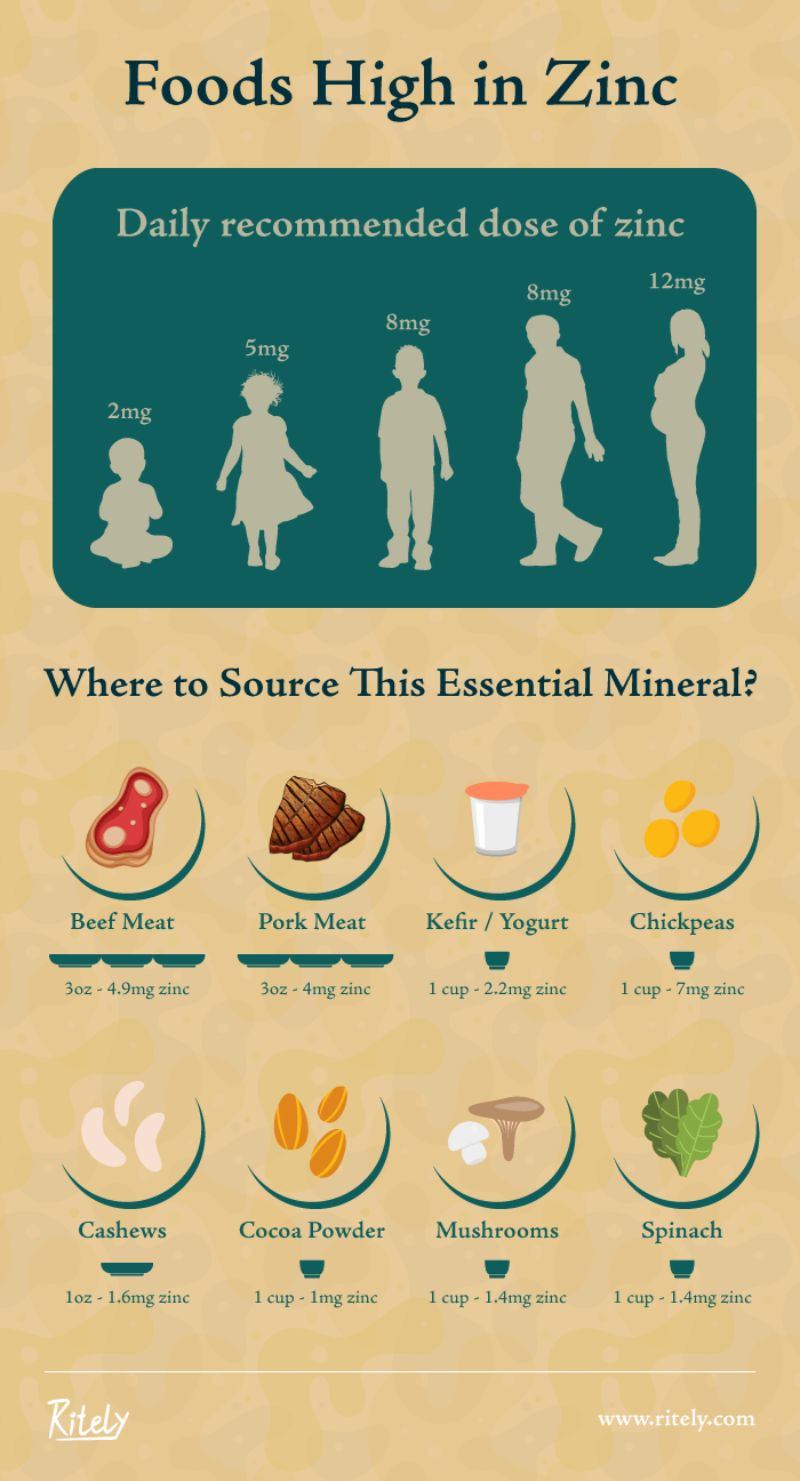 Foods High in Zinc – Where to Source This Essential Mineral?