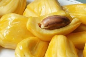 Jackfruit Seeds