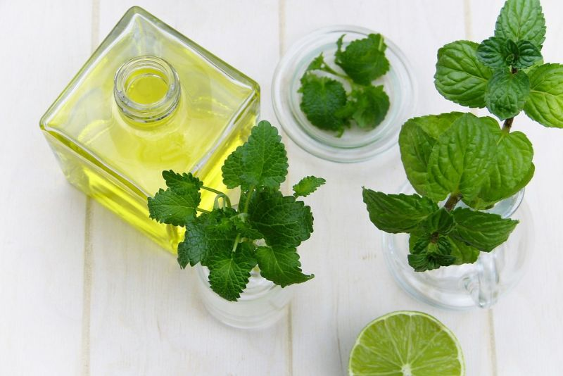 Essential Oils for Muscle Pain: Everything You Need to Know