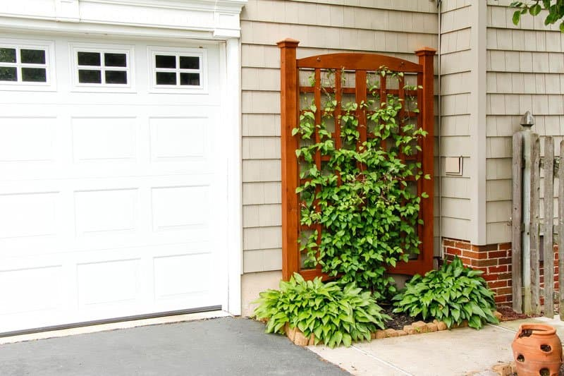 20 Charming DIY Trellises Every Garden Needs