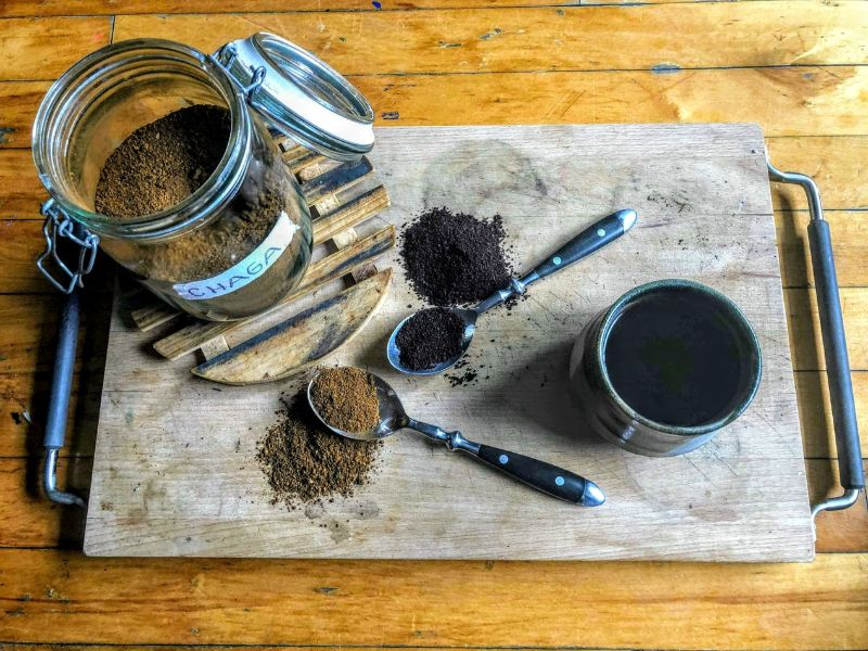 Chaga Benefits: The Immune-Boosting Superfood