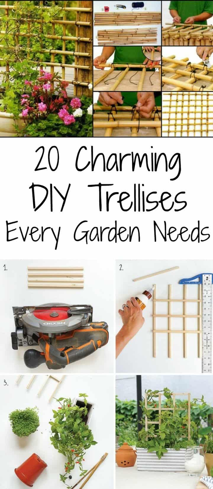 DIY Trellises