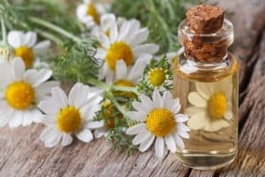 Essential Oils for Sleep: How to Get a Good Night's Sleep