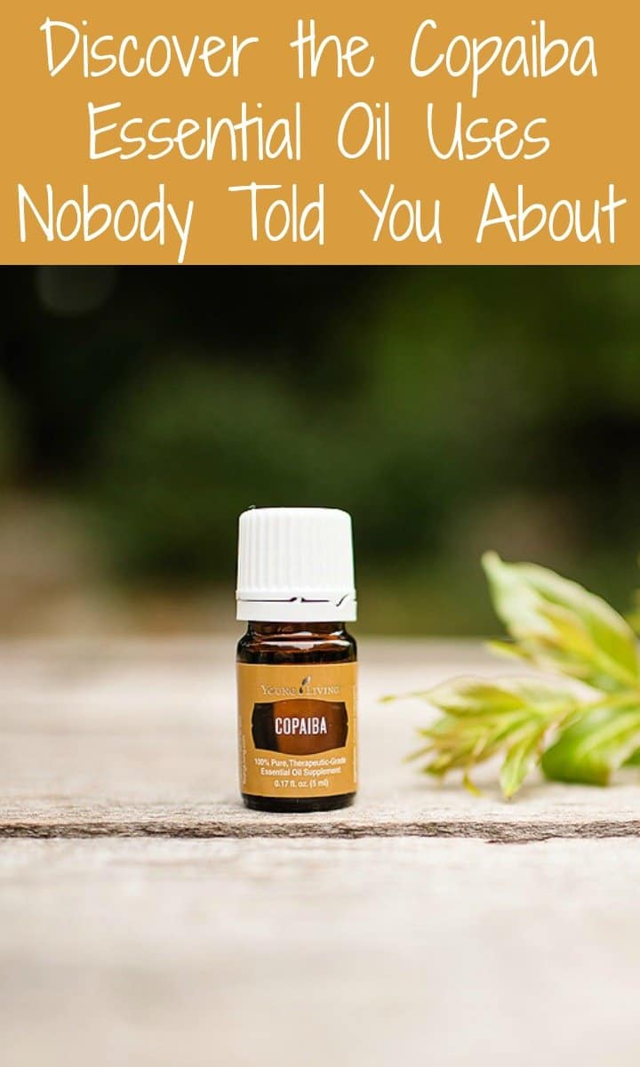 Discover the Copaiba Essential Oil Uses Nobody Told You About