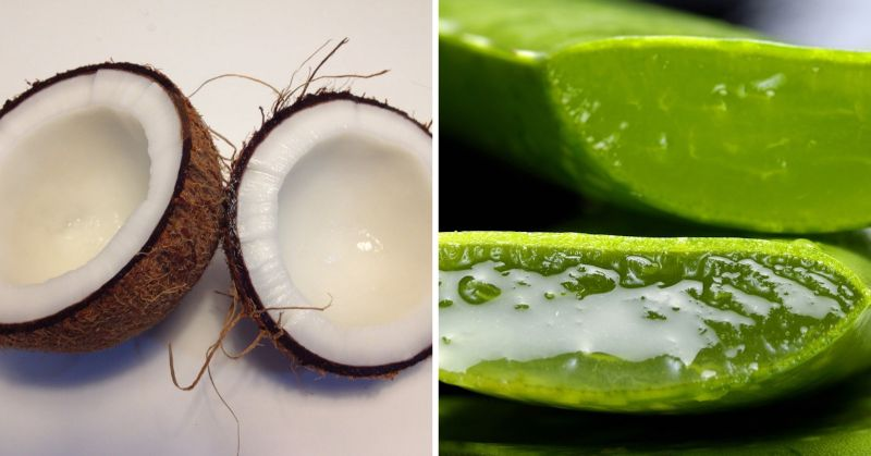 How to Use Coconut Oil for Sunburn