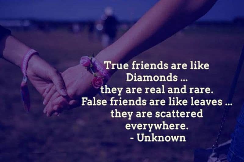 Funny Quotes About Friends | 32 Funny Touching And Totally True Friendship Quotes Ritely