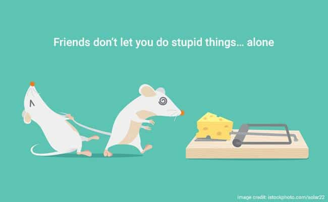 60 Funny Touching And Totally True Friendship Quotes Ritely Awesome Funny Friendship Quotes