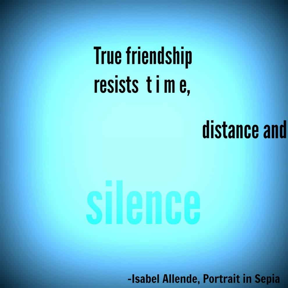 Images About Friendship Quotes 32 Funny Touching And Totally True Friendship Quotes  Ritely