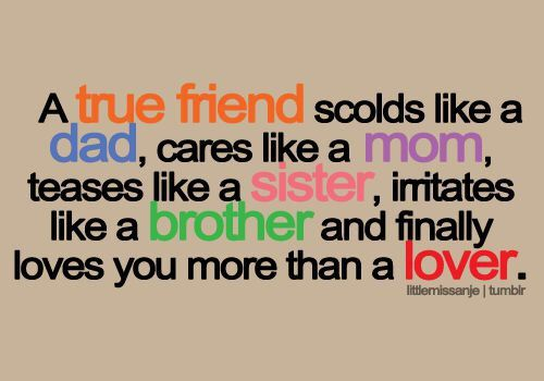 60 Funny Touching And Totally True Friendship Quotes Ritely Custom Images About Friendship Quotes