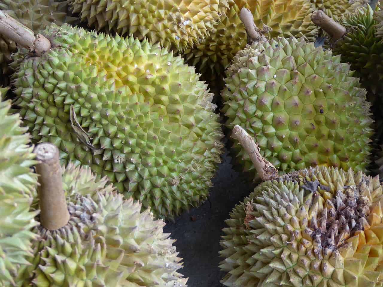 Top 15 Exotic Fruits You Can Find at Your Local Store