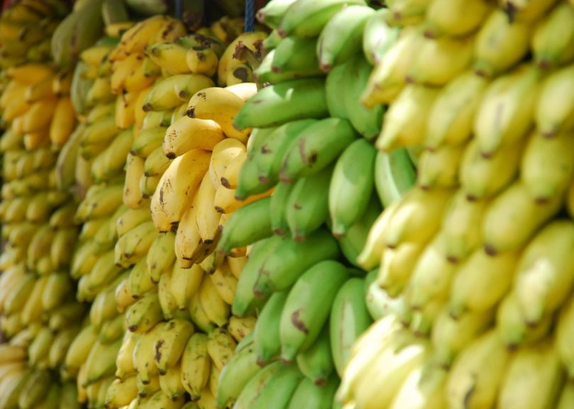 The Benefits of Bananas: The Top 9 List