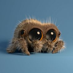 The Most Adorable Spider You Have Ever Seen Will Brighten up Your Day