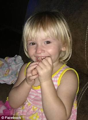 Pit Bull Never Left the Side of This Autistic Toddler Who Went Missing in the Woods for Two Days
