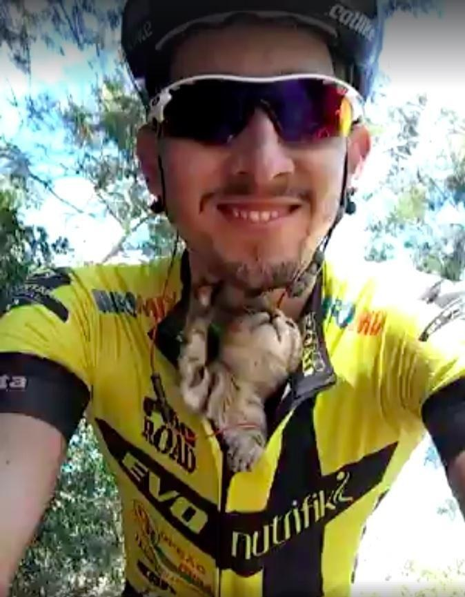 Kitten Can't Stop Kissing Cyclist Who Saved Him from Certain Death