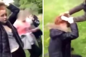 WATCH: Bully Mercilessly Drags Girl by Hair While Gang Cheers
