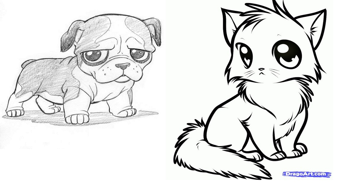 How To Draw Cute Animals Step By Step Guide Ritely