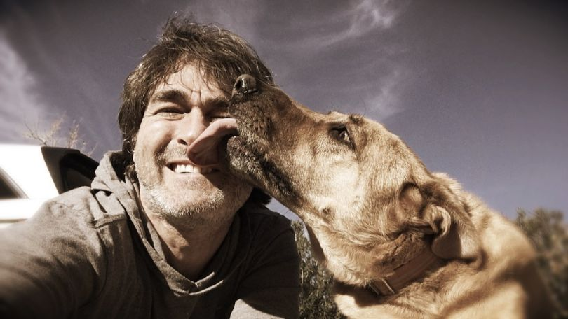 Why Dogs Lick – Understanding the Love Between a Pup and Owner