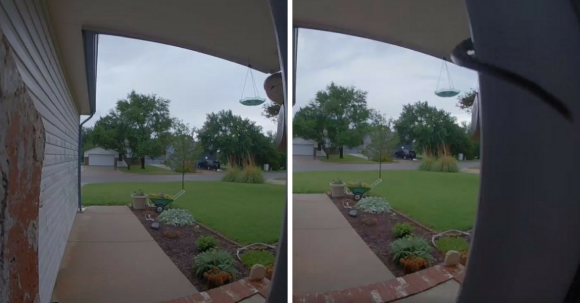 _This is no joke!_ Woman Freaks Out After Finding Out Who Keeps Ringing Her Doorbell